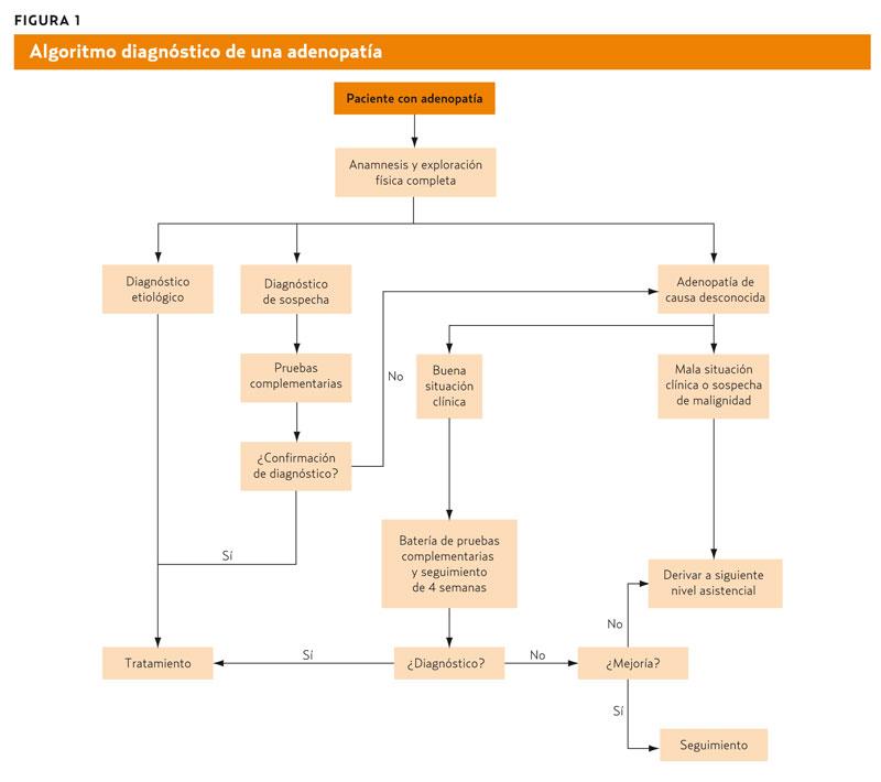 Adenopatías (AMF 2011) A partir de un síntoma