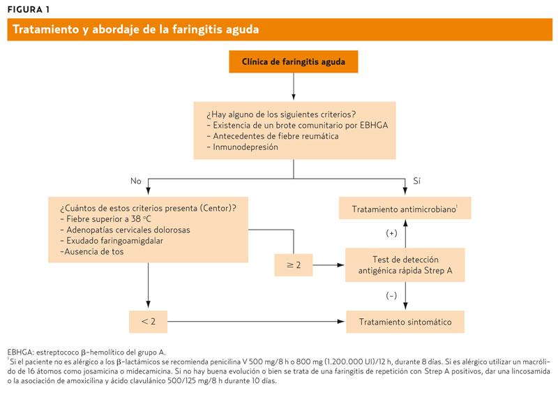 Infecciones Del Tracto Respiratorio Amf 2011 Los Principales